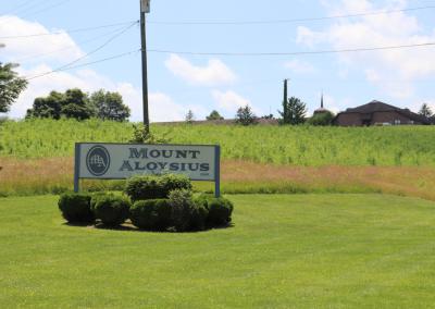 Mount Aloysius 0076